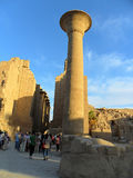 North Africa, Egypt, Luxor Temple. Travel to the Egypt, visit the Luxor Temple, in the North Africa Royalty Free Stock Images