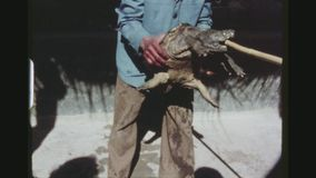 North African Snapping Turtle