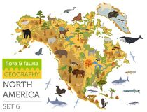 North America flora and fauna map, flat elements. Animals, birds Royalty Free Stock Photo