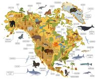 North America flora and fauna map, flat elements. Animals, birds Royalty Free Stock Image