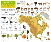 North America flora and fauna map, flat elements. Animals, birds. And sea life big set. Build your geography infographics collection. Vector illustration Stock Photos