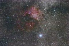 The North America nebula in Cygnus. Brightest star Deneb royalty free stock images