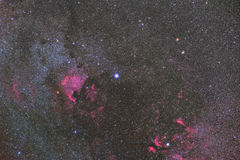 North America Nebula. Imaged with a telescope and a scientific CCD camera royalty free stock photos