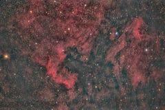 North America Nebula stock photo