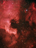 North America and Pelican Nebulae Royalty Free Stock Image