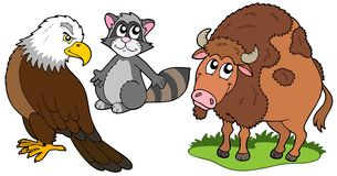 North American animals collection. Vector illustration Royalty Free Stock Image