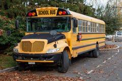 North American School Bus stock image