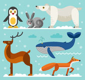 North and arctic animals icons set Stock Photography