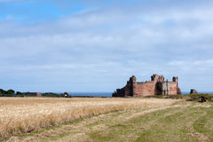 NORTH BERWICK, EAST LOTHIAN/SCOTLAND - AUGUST 14 : View of Tanta Royalty Free Stock Photos