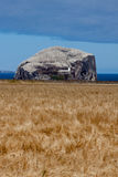 NORTH BERWICK, FIRTH OF FORTH/SCOTLAND - AUGUST 14 : View of Bas Stock Photo