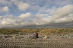 North bull island. royalty free stock images