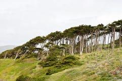 North California coast Stock Photography