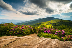 North Carolina Appalachian Trail Spring Scenic Mountains Landsca. Pe hiking in the Blue Ridge Mountains of Western NC and Eastern Tennessee Stock Photography