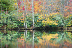 North Carolina Autumn Color Reflections Royalty Free Stock Photos