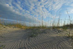 North Carolina Beach Coastal Dune and Sea Oats Royalty Free Stock Photo