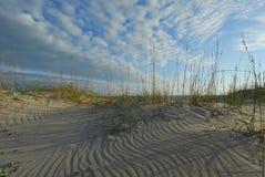 North Carolina Beach Coastal Dune and Sea Oats royalty free stock photo