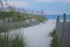 North Carolina Beach and dune fence with foreground in focus. Stock Photo