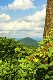 North Carolina Royalty Free Stock Photography