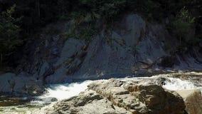 North Carolina mountain streeam stock video