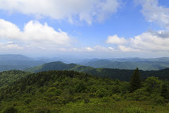 North Carolina Mountains in Summer. View of the NC mountains in the summer, from the Blue Ridge Parkway royalty free stock photo