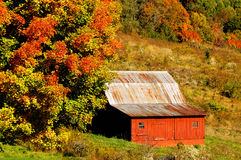 North Carolina Red Barn in Autumn Horizontal. Lovely North Carolina red barn in autumn with a brilliant maple tree horizontal Stock Image