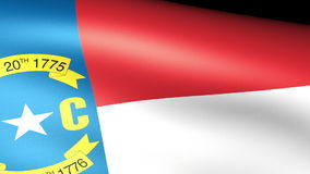 North Carolina State Flag Waving. Video footage stock video footage