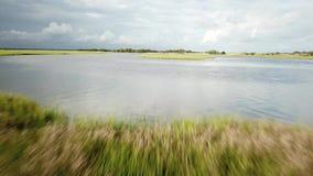 North Carolina Tidal Creek Marsh stock video