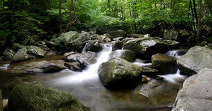 North Carolina Trout Stream Stock Photos