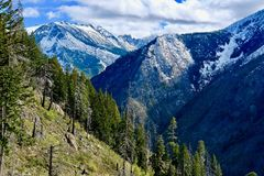North Cascade Mountains  wilderness. Stock Photos