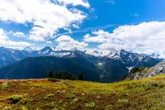 The North Cascades Countryside. The alpine high country of the North Cascades National Park is a place where you can hike the mountain and see wildflowers and Royalty Free Stock Photo
