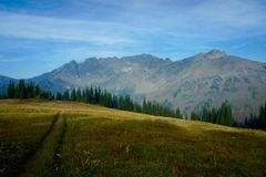 North Cascades Meadow royalty free stock photography