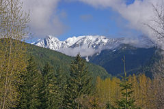North Cascades National Park Stock Image