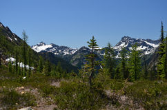 North Cascades National Park Royalty Free Stock Photography