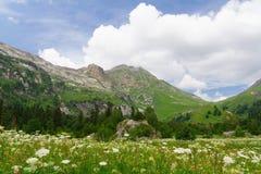 North Caucasus Royalty Free Stock Photo
