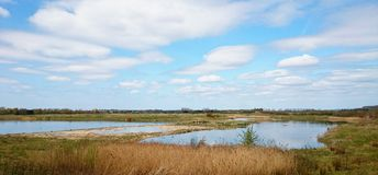 North Cave wetlands Royalty Free Stock Photography