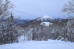 North China Snow. In xuexiang Royalty Free Stock Photography