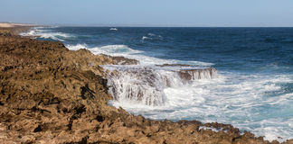 The North Coast of Curacao. Playa Kanao or surf beach Caribbean stock images