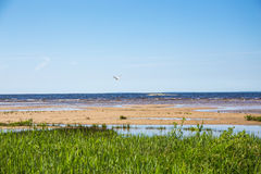 North Coast of Gulf of Finland Stock Photo