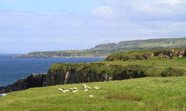 Northern Ireland, County Antrim: North Coast  Stock Photos