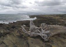 North coast of the island of mallorca Royalty Free Stock Photos