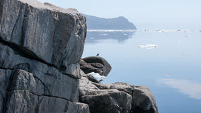 North coast sea of Okhotsk Royalty Free Stock Photography