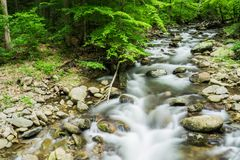 North Creek - Wild Mountain Trout Stream - 2. North Creek is a popular wild mountain trout stream located in Botetourt County, Virginia, USA Stock Images
