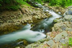 North Creek - Wild Mountain Trout Stream. North Creek is a popular wild mountain trout stream located in Botetourt County, Virginia, USA Stock Images