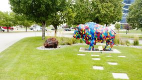 North Dakota färgade bisonen Arkivfoto