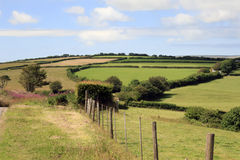 North Devon farm fields England Stock Images