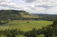 North Downs. Dorking. Surrey. England Royalty Free Stock Photos