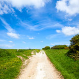 North Downs Way path Royalty Free Stock Photography