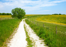 North Downs Way path Royalty Free Stock Images