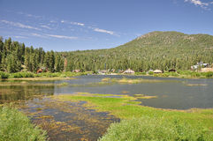 North end of Big Bear. Big Bear Lake in Southern California features a large marshy area along its northern shore royalty free stock photos