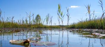 North European natural landscape. Lake Stock Photo
